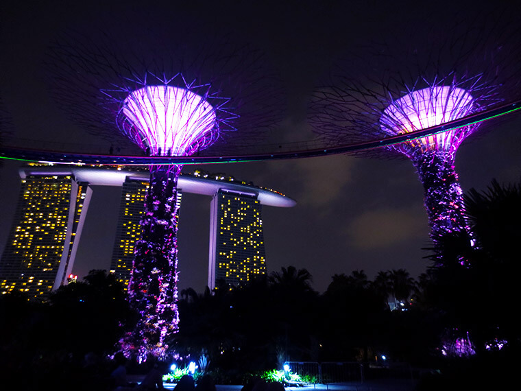 magic trees in the marina bay gardens in singapore