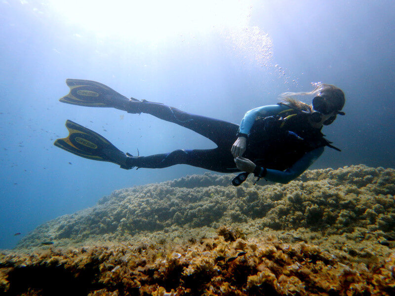 me scuba diving in mallorca around port d'andratx