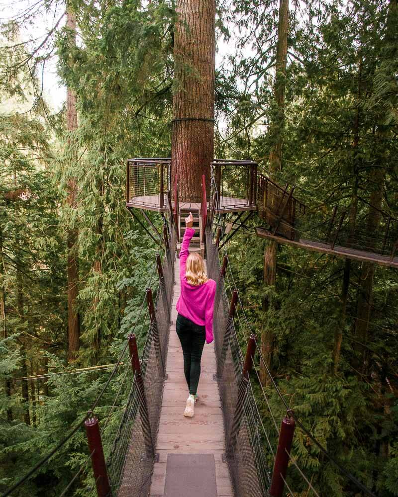big birthdays call for big celebrations and where to better celebrate than high up in the trees at capitano suspension bridge park