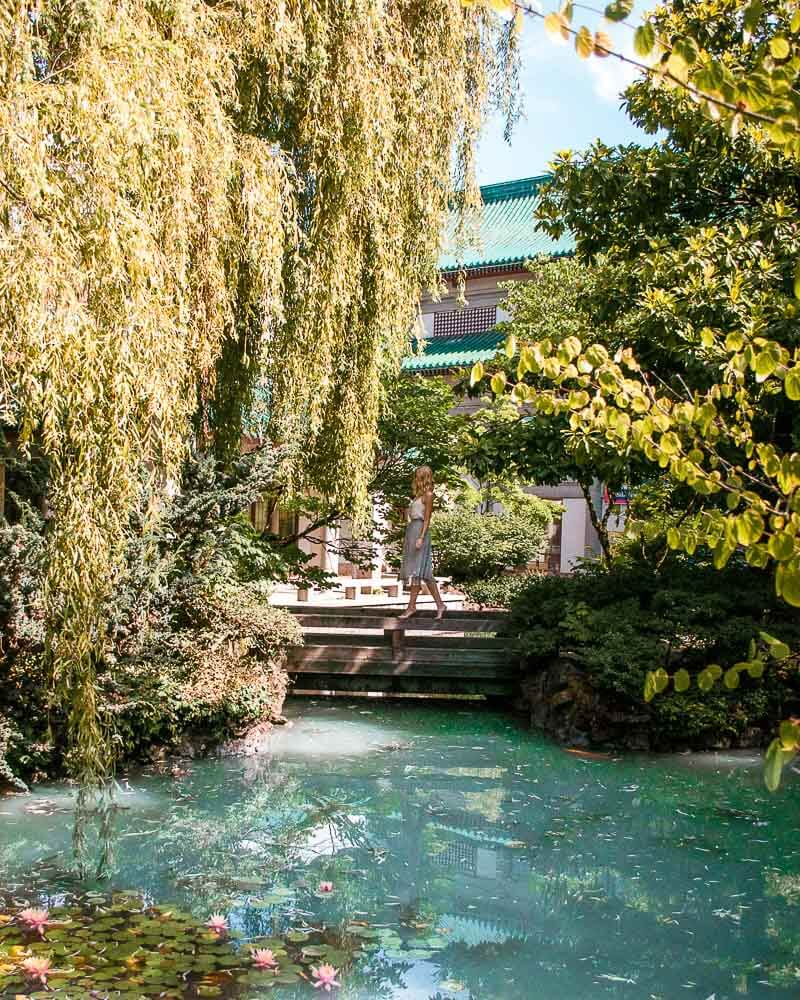 china town is always worth a visit so definitely include this cute Chinese garden in your Vancouver trip planner