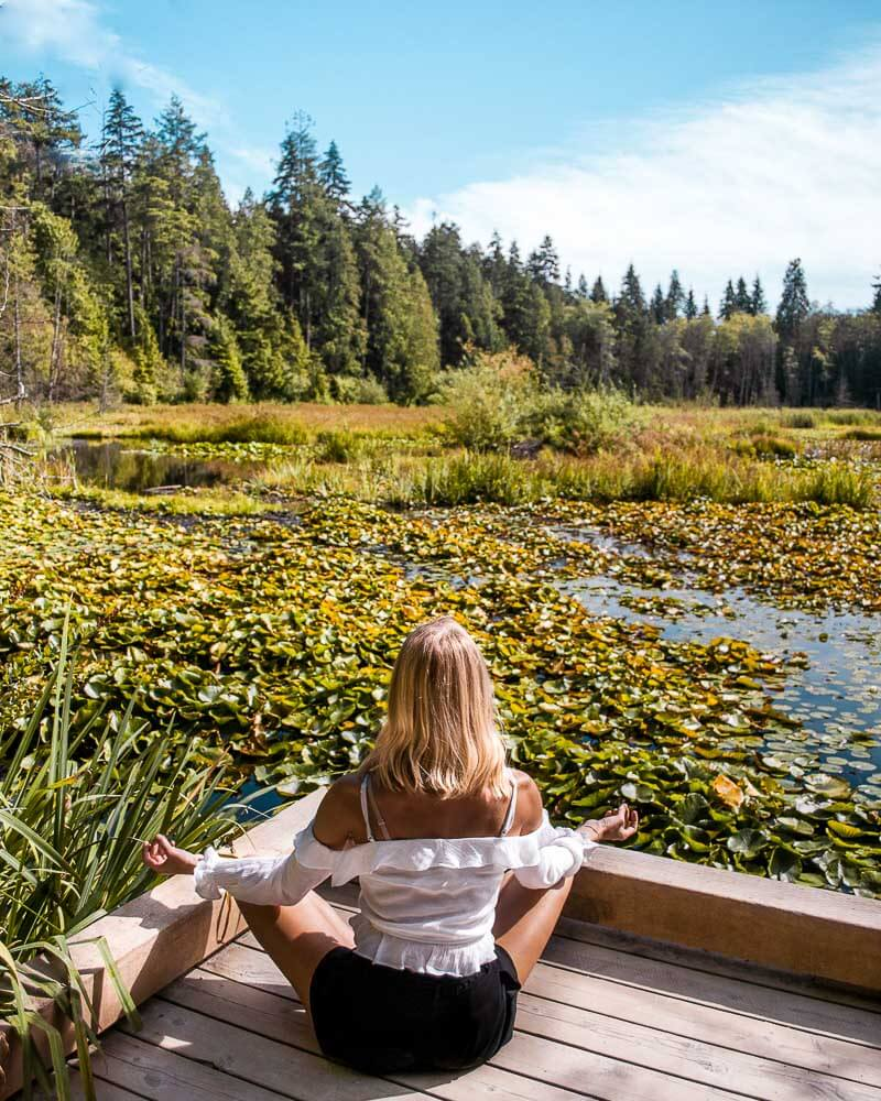 beaver lake gives away such a calm vibe so make sure to check it out when visiting Stanley park